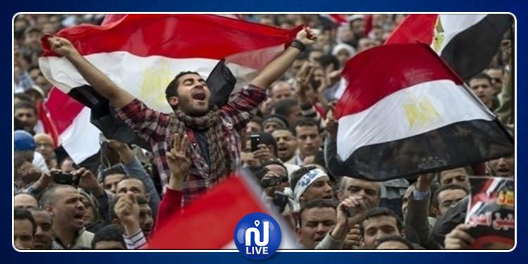 تزامنا مع احتفالات ثورة ''30 يونيو'': اعتقال عناصر إرهابية