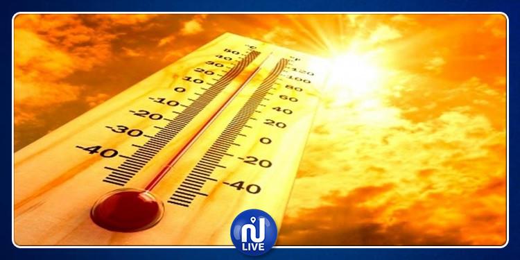 دولة عربية تدخل رسميا سجل درجات الحرارة القياسية