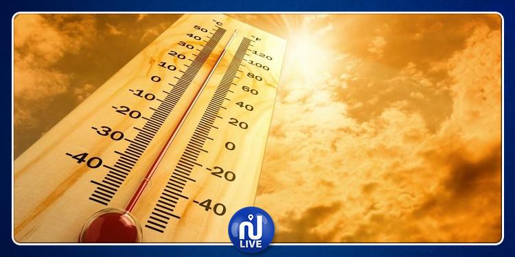 وصلت إلى 63 درجة: 3 دول عربية الأعلى في درجات الحرارة عالميا