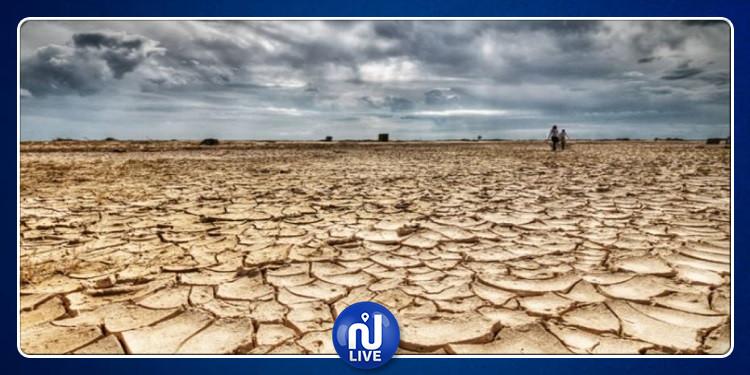 قائمة الدول المهددة بالجفاف: تونس في هذه المرتبة
