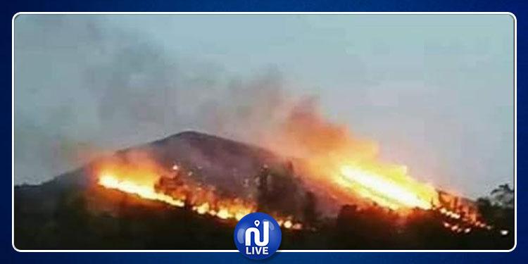 حريق بجبل عمار يأتي على حوالي 40 هكتارا من الغابات