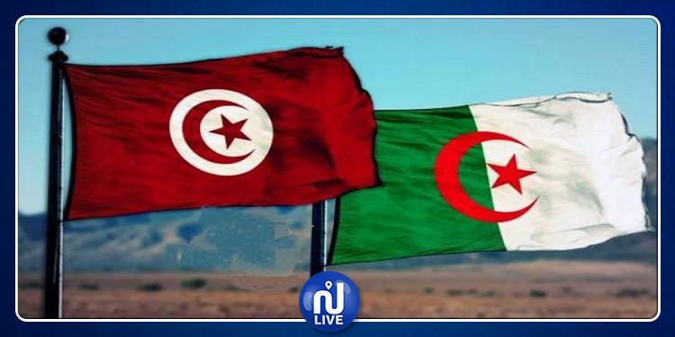 لقاءات  تونسية جزائرية مشتركة بمجال البناء والفندقة
