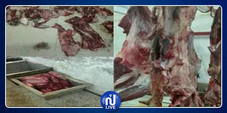 المنستير: إتلاف 131 كلغ من اللحوم الحمراء المتعفنة