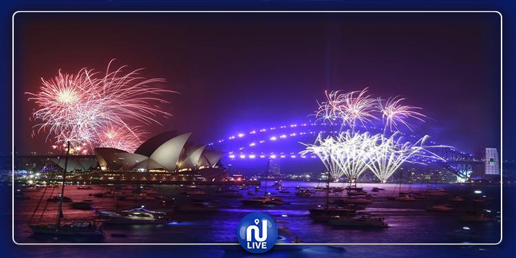 الإمارات العربية المتحدة تستقبل العام الجديد (فيديو)