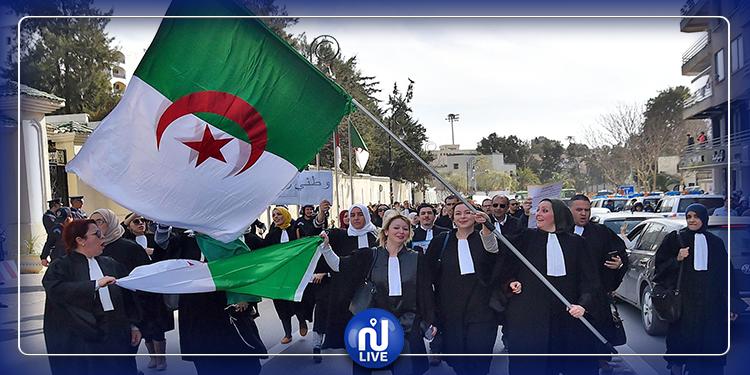 المحامون الجزائرون يرفضون ضرائب قانون المالية 2020
