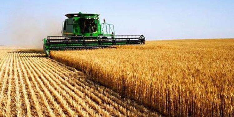 Agriculture: Une bonne campagne, en perspective