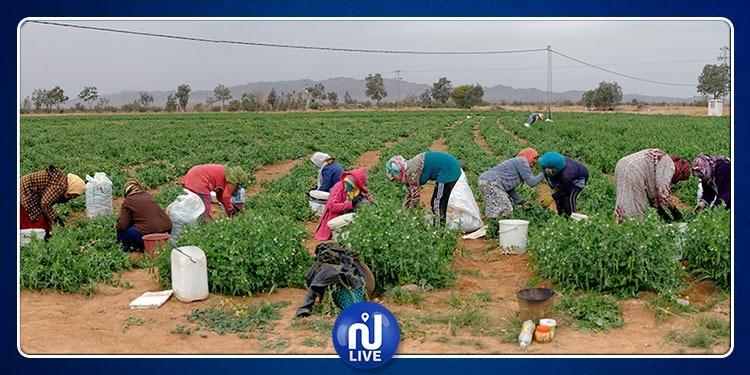 2019-2028: Décennie mondiale de l'agriculture familiale