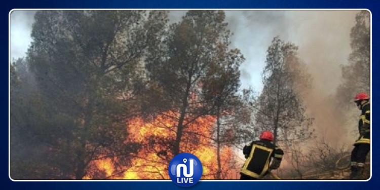 105 حرائق بمختلف المناطق اللبنانية خلال 24 ساعة