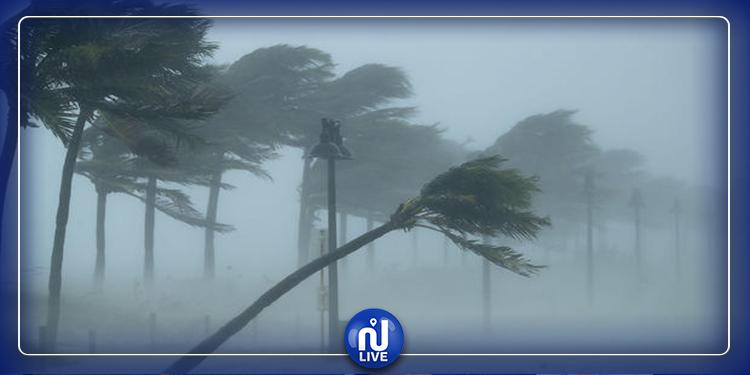 اليوم: تواصل هبوب الرياح القوية