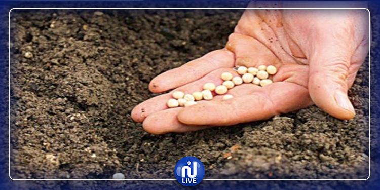 الكاف: الأمطار ساهمت في إنقاذ بعض مزارع الحبوب في الشمال