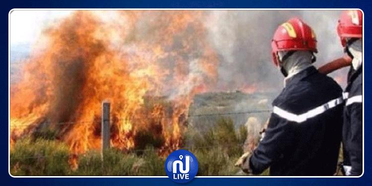 باجة: اجتماع تنسيقي يسفر عن خطة وطنية لمقاومة الحرائق العام القادم