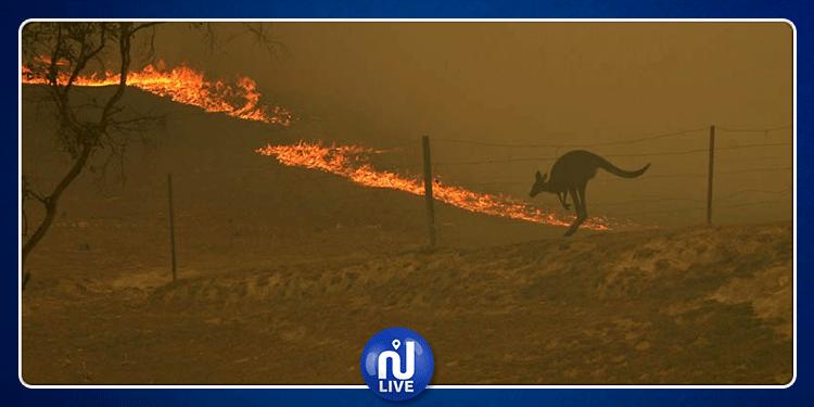 أستراليا: موجة حر شديدة تتسبب في اندلاع حرائق كبيرة بالبلاد