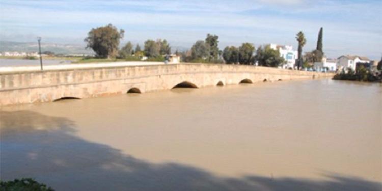 منوبة: العثور على 11 قطعة سلاح تاكلها الصدأ داخل كيس في قنال وادي مجردة