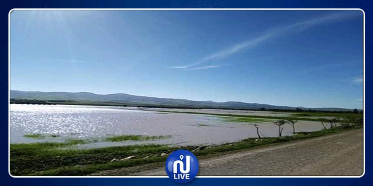 باجة:وادي مجردة يضر بـ600 هكتار من الأراضي السقوية والزراعات الكبرى