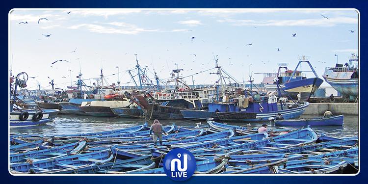 مدنين: تراجع إنتاج الصيد البحري خلال الأشهر الثمانية الاولى من سنة 2019