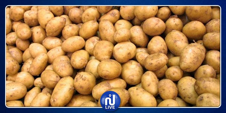 سيدي بوزيد : حجز 2.5 طنا من البطاطا المهرّبة