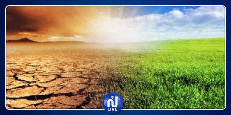 الاعلان عن حالة الطوارئ المناخية في تونس: مطلب حركة الشبيبة من أجل المناخ