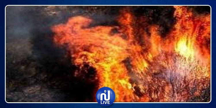 اندلاع حريق كبير بجبل لبنان