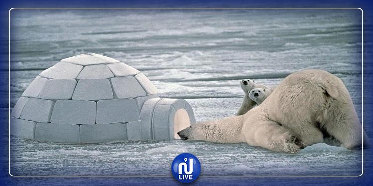 إكتشاف أعمق نقطة على اليابسة في العالم تحت الجليد
