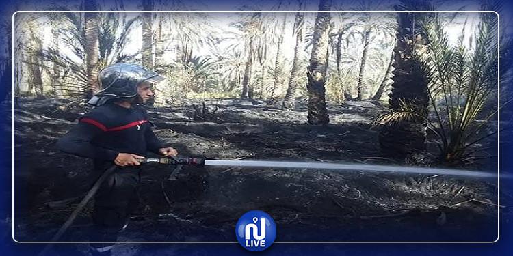 توزر: السيطرة على حريق إندلع في حامة الجريد (صور)