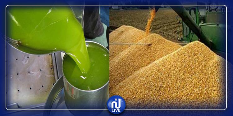 بسبب الزيت والحبوب: عجز الميزان التجاري يتضاعف 3 مرات
