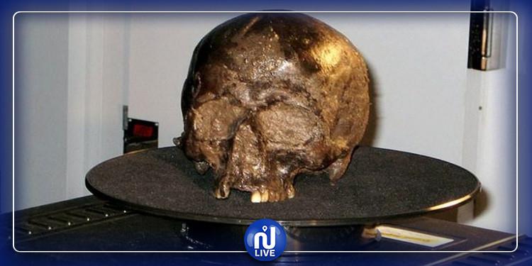 اكتشاف أقدم مخ محفوظ في العالم سيكون مفتاح لمكافحة الخرف (صور)