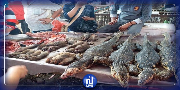تبرئة سوق الحيوانات في ووهان الصينية من تهمة كورونا