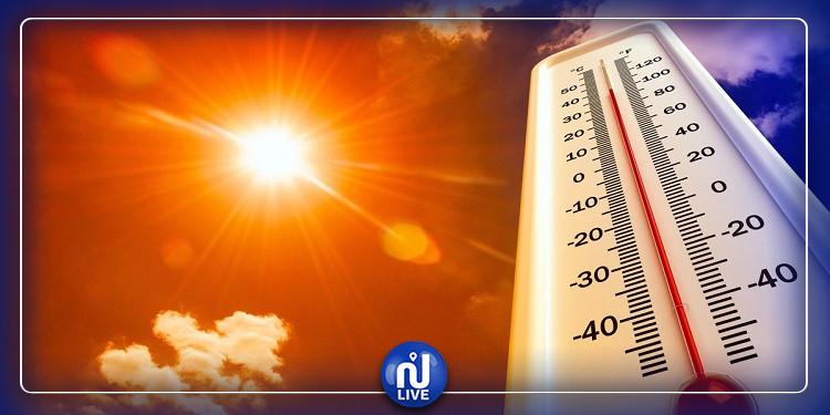 ظهور الشهيلي مع ارتفاع مرتقب في درجات الحرارة