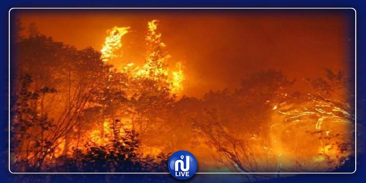 سيدي بوزيد: حريق بالمنطقة العسكرية المغلقة بجبل مغيلة