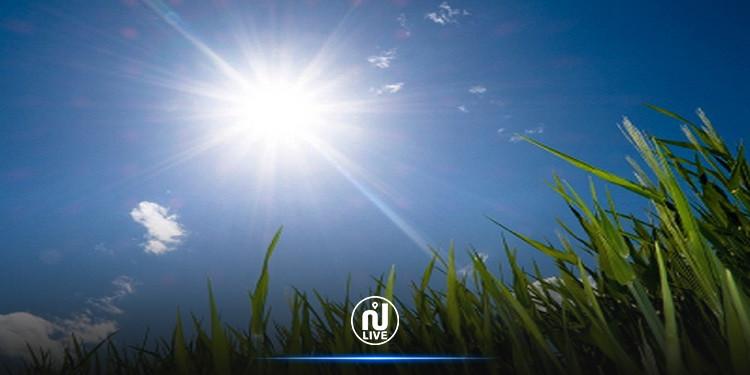 الرصد الجوي: الحرارة في ارتفاع