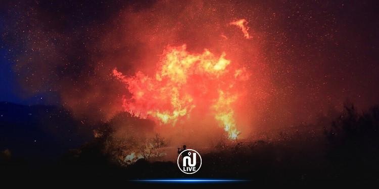 خبراء يحذرون.. دخان الحرائق يسبب أعراضا مشابهة لكورونا