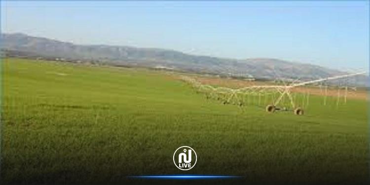 استرجاع عقار دولي يمسح 35 هكتارا في معتمدية سيدي بورويس بسليانة