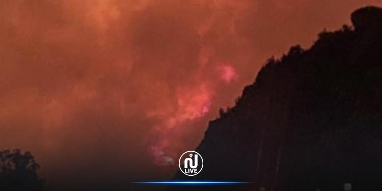 اندلاع حريق ضخم في غابات جنوب السعودية