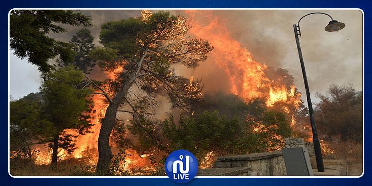 مواطن سوري يتبرّع بحوالي 67 ألف دولار لإطفاء حرائق لبنان