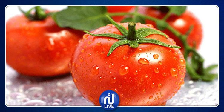 تناول  الطماطم  يؤثر على خصوبة الرّجال !