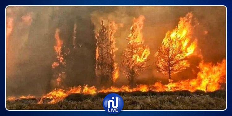 لبنان: أمطار غزيرة تساهم في إطفاء الحرائق