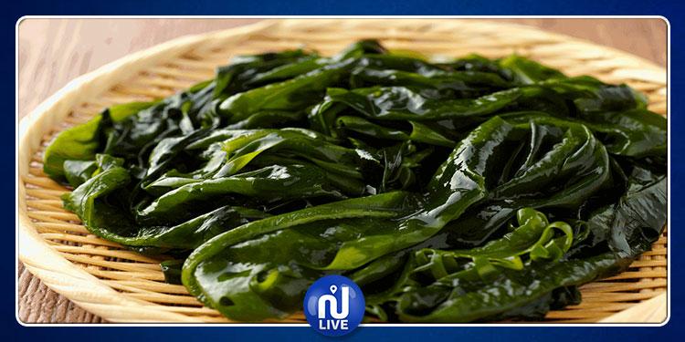 دراسة:  تناول الأعشاب البحرية يحمي من أمراض القلب الخطيرة