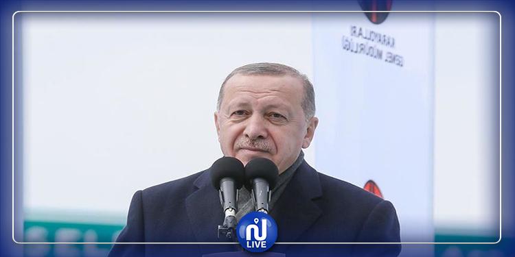 أردوغان: لدينا قتلى في ليبيا