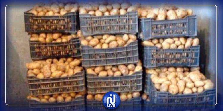 بنزرت: حجز 500 كلغ من البطاطا معدة للاحتكار