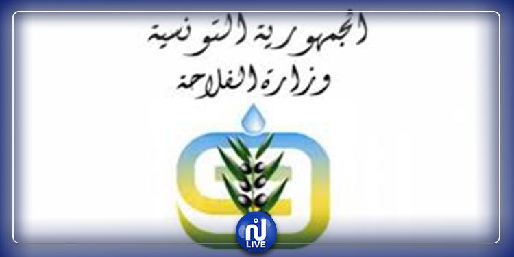 حركة نقل جزئية: وزارة الفلاحة توضّح