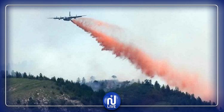 وزارة الدفاع تعاضد جهود إطفاء حريق جبل الناظور