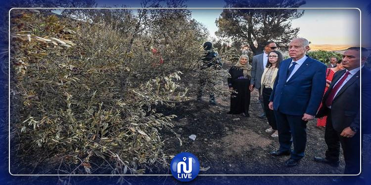 رئيس الجمهورية يعاين أضرار حريق عمدون (صور)