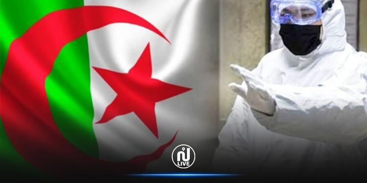 الجزائر: 29 ولاية لم تسجل أية اصابة جديدة بكورونا