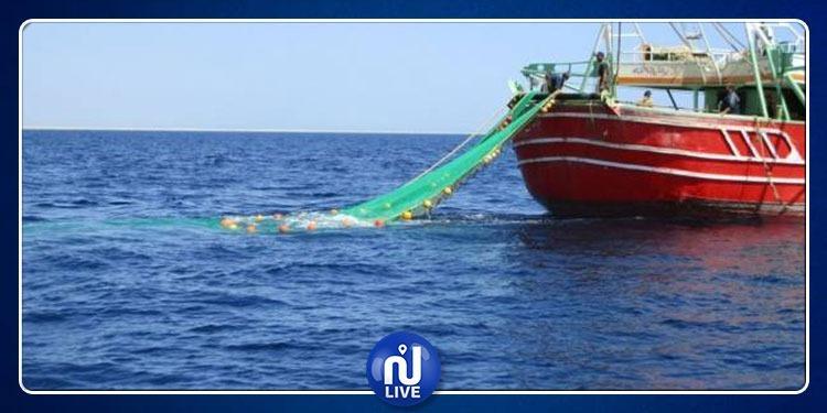 تونس تحجّر صيد هذا النوع من السمك طيلة 3 أشهر