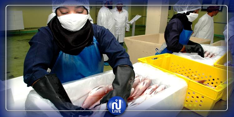 عامل بمصنع أسماك ينقل العدوى إلى 533 آخرين..في افريقيا