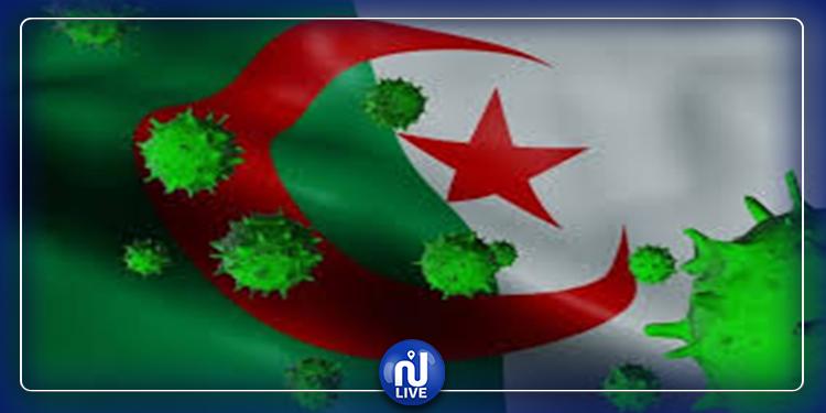 كورونا.. خسائر جديدة في الجزائر