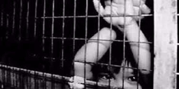 طفل الـ9 سنوات مهدد بالسجن بسبب معلمته!