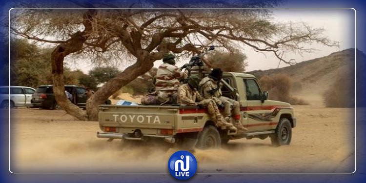 6 touristes français tués au Niger !