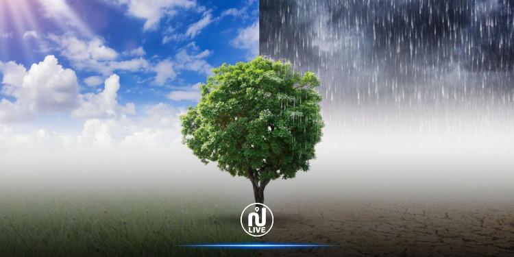 La sécheresse s'aggrave en France