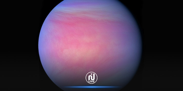 La vie sur Vénus pourrait être possible…